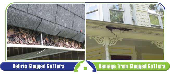 Gutter Issues and Damage
